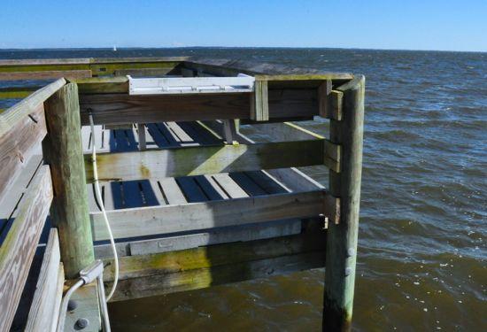 Lou Mac Park Pier gauge bait