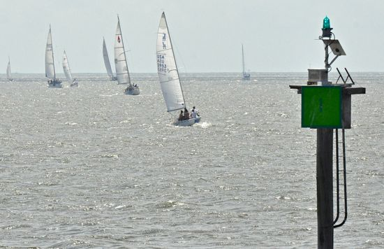 leukemia cup 13 bow
