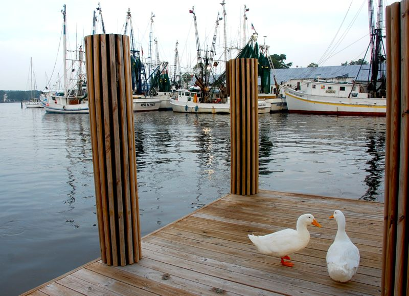 new town dock ducks trawlers