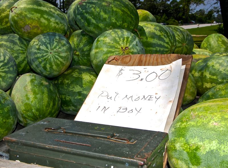 water melon highway 55 road side stand