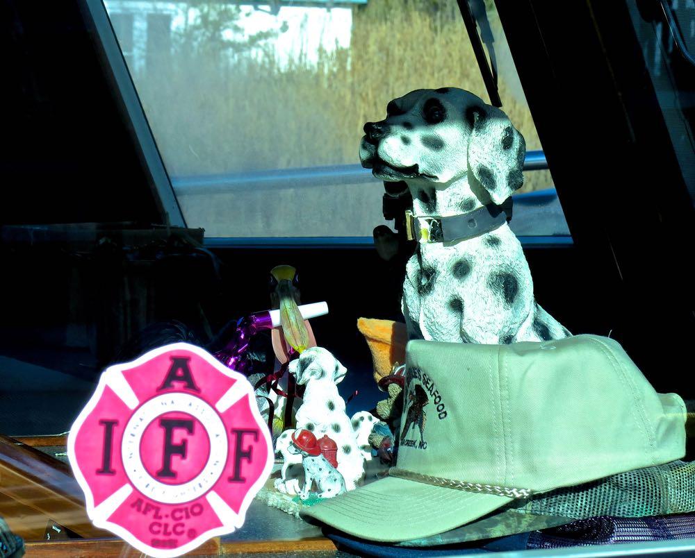 fire dog dalmatian