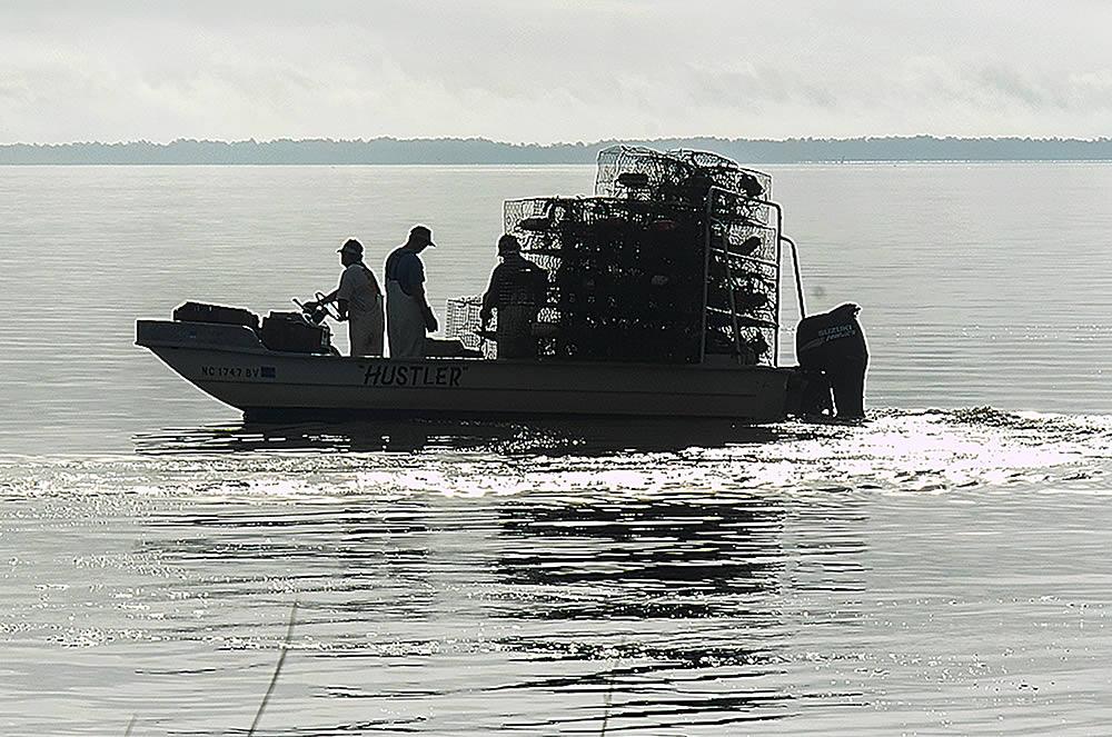 crab fishermen pull traps