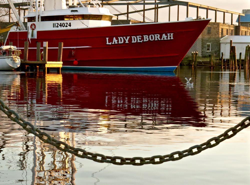 lady deborah oriental harbor roofless