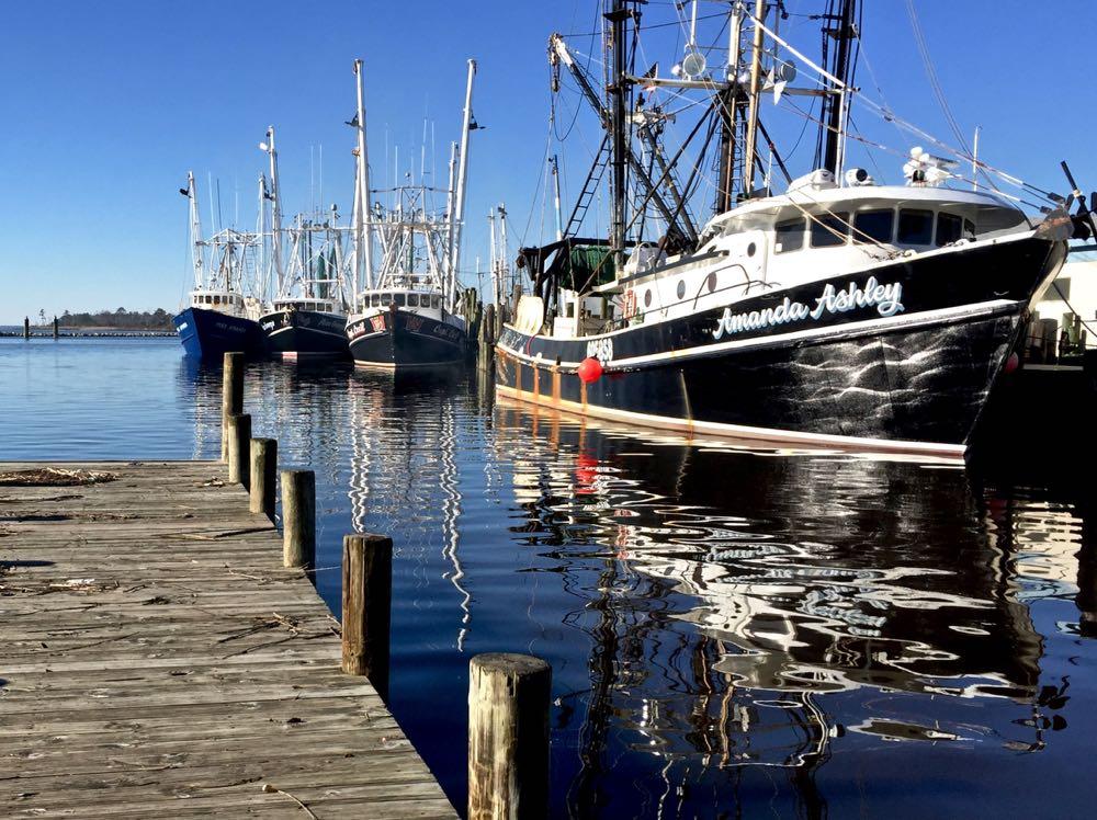 town dock trawlers amanda ashley