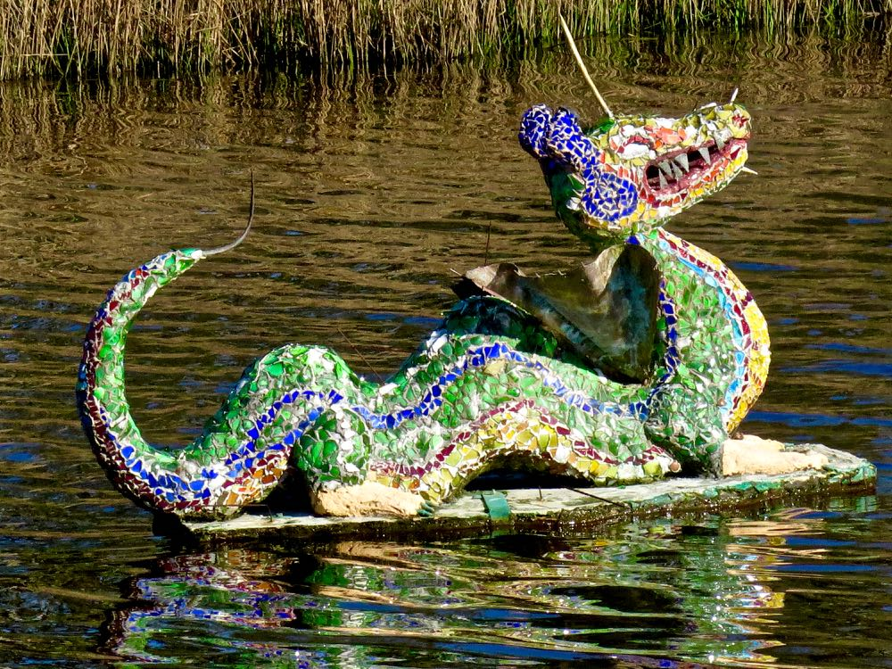 duck pond dragon