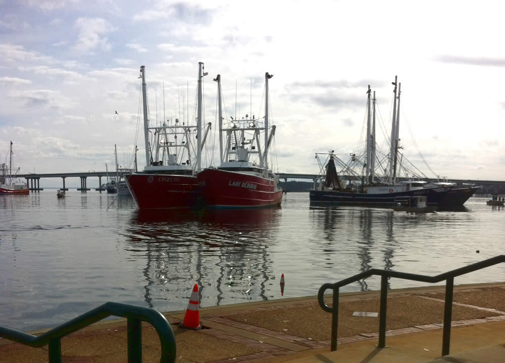 shrimp trawlers in New Bern