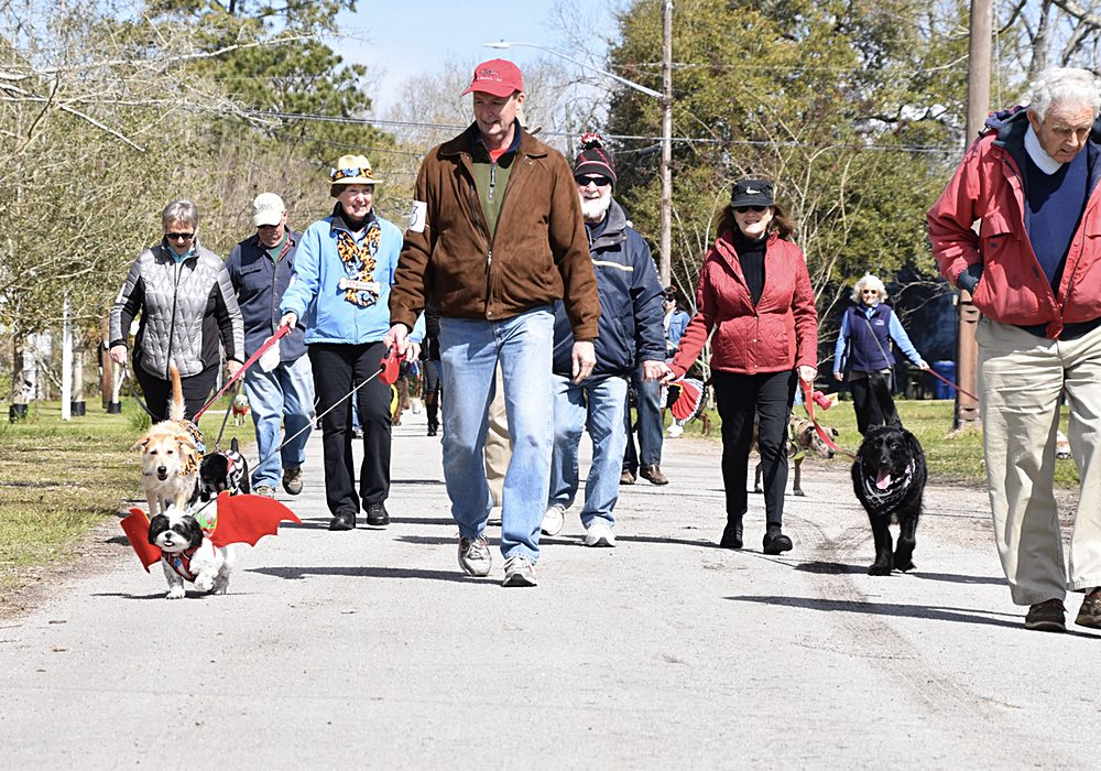 PAWS Pet Parade