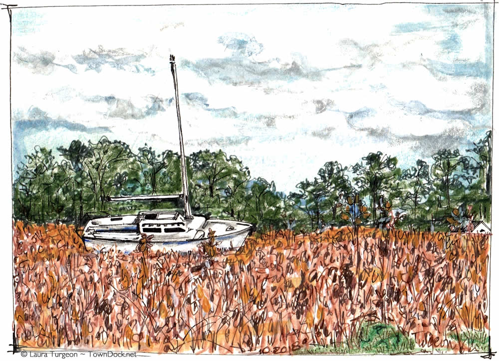 sailboat in a field