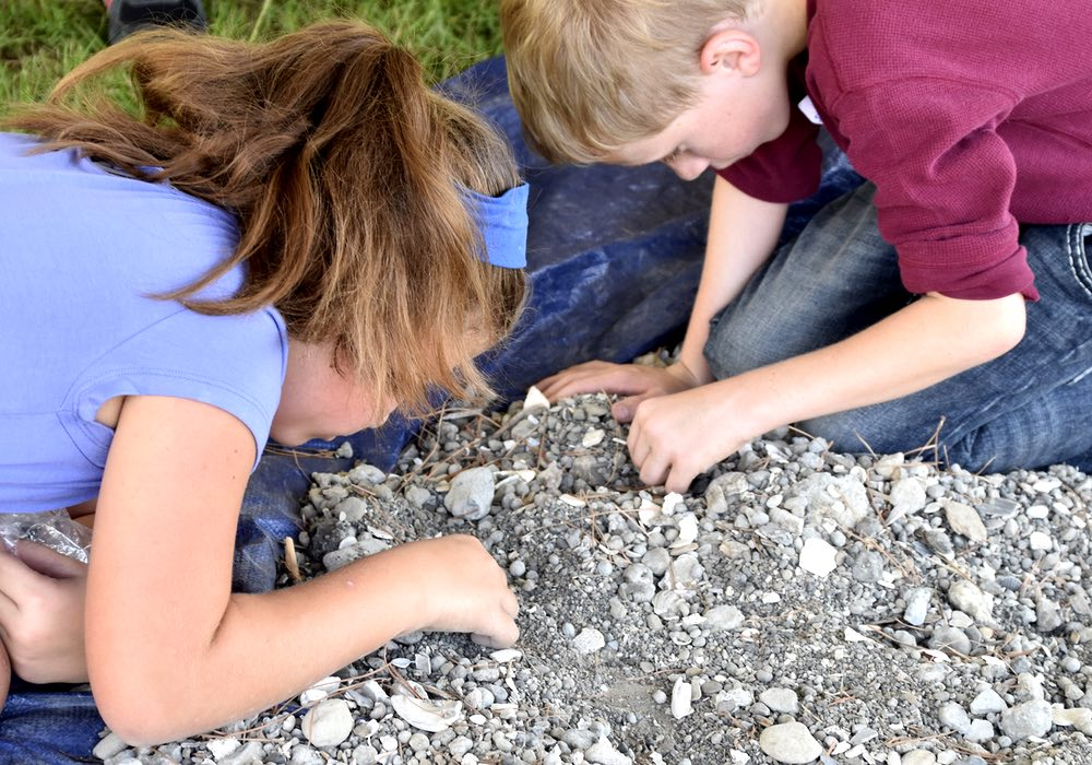 Searching for fossils.