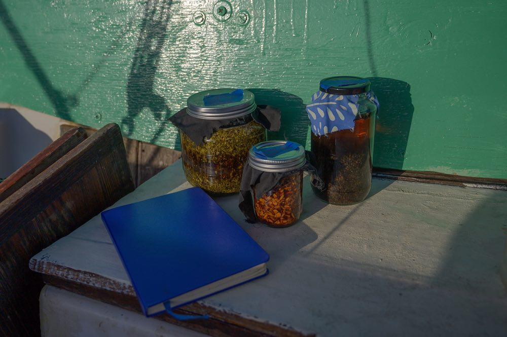 Three jars and a blue notebook are on a bench. Inside the jars are herbs soaking in liquid.
