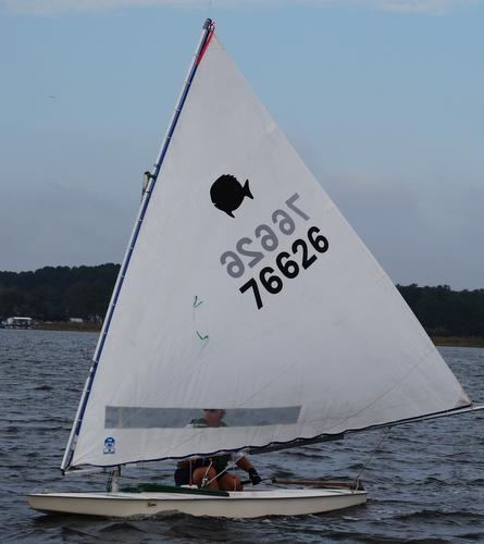 Free Free optimist sailboat plans   David Chan