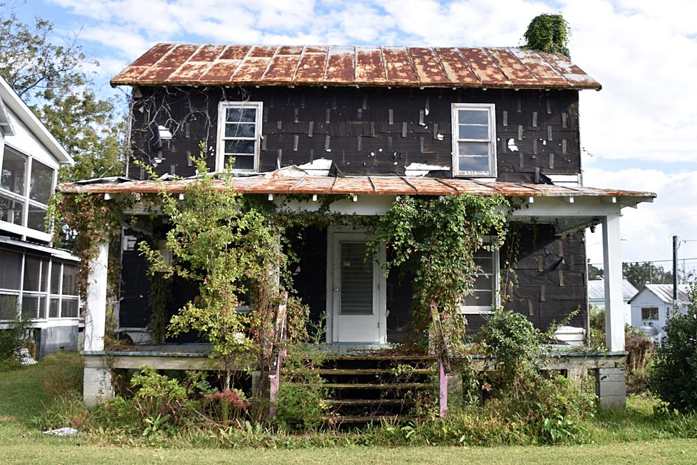 Vines grow up an abandoned two story frame house covered in black tar paper.